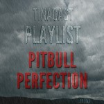 Playlist_pitbull